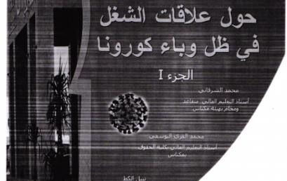 PUBLICATION N°11-2020