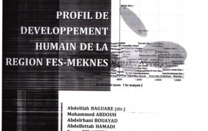 PUBLICATION N°13-2020